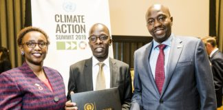 climate action and sustainability
